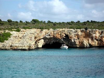 DWS / Psicobloc Mallorca
